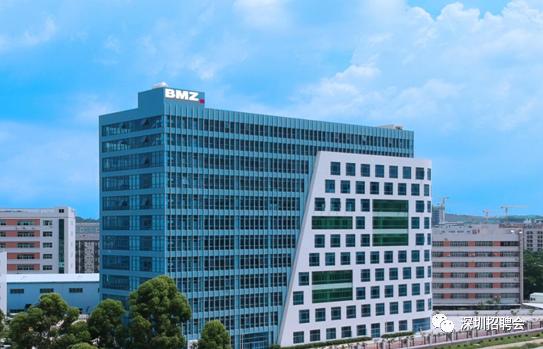 德国BMZ集团招聘信息